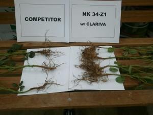 clariva vs competitor.20