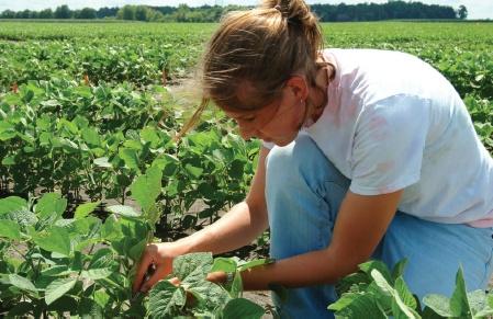 Crop Adviser Conference to Offer Ag Professionals Practical Management