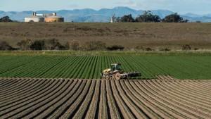 Study: Drought Costing California Billions