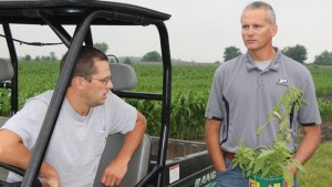 Latest Weed Management Technology, Strategies to Highlight Purdue's Weed Day