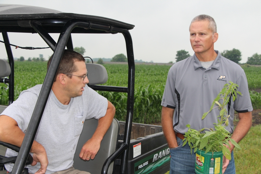 Purdue University Extension weed scientist Dr. Bill Johnson (right) holds a recently pulled Palmer Amaranth plant in Central Illinois on a recent Valent Fierce XLT plot tour.