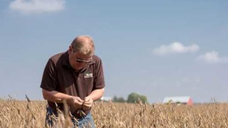 Photo credit: United Soybean Board/the Soybean Checkoff