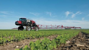 Confirm Disease Before Spraying Fungicides