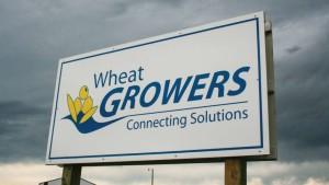 Wheat Growers