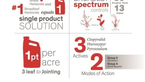 Dow AgroSciences Introduces New Spring Wheat <b>Herbicide</b> | CropLife