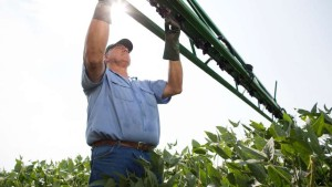 7 Steps for Removing Herbicide Residues