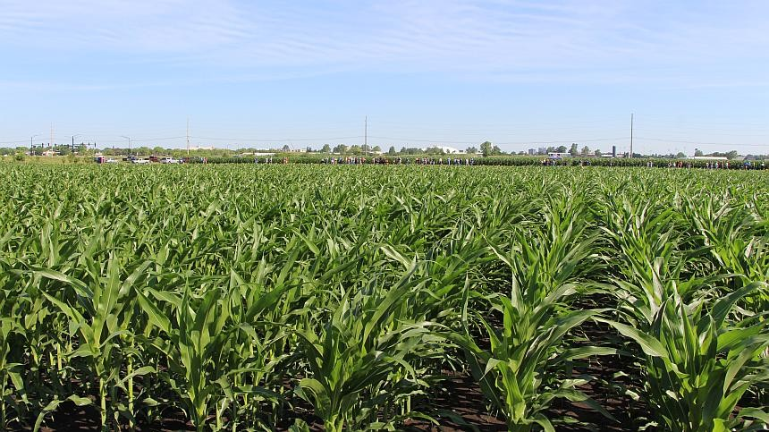 Sustainable 4RWI Connects Policymakers with 4R Nutrient Stewardship