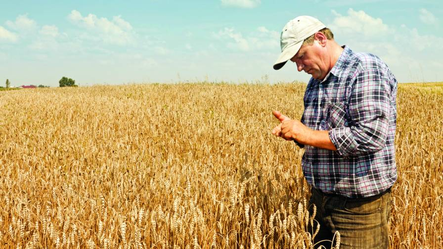 Growers Looking For Selectivity, Flexibility With Fungicide