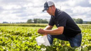 Micronutrients Remain A Piece Of Yield Puzzle In 2017