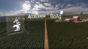 EPA OKs Monsanto NemaStrike Technology in Row Crops