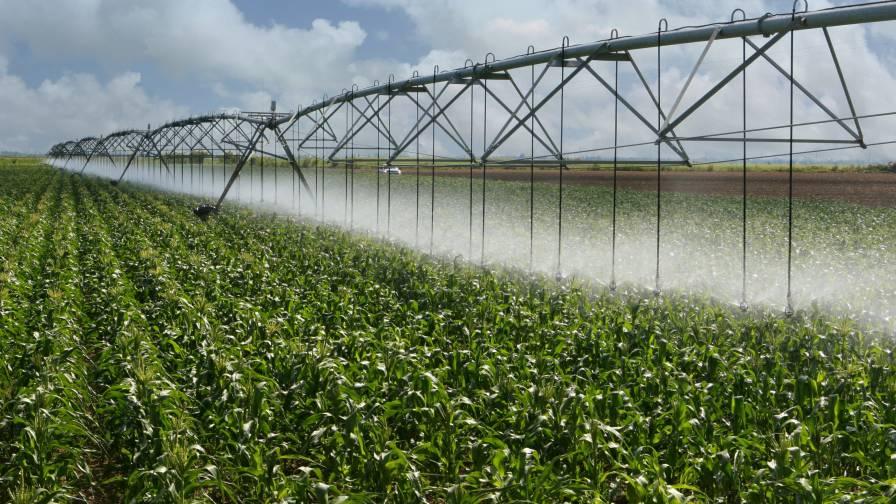 Corn-Irrigation