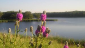 La Crosse Seed Continues Focus on Soil and Water Conservation
