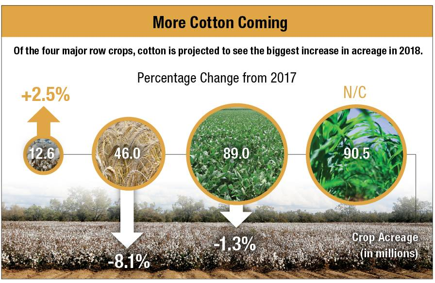 Cotton-Chart