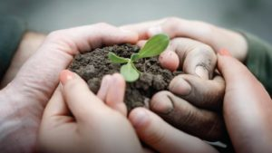 5 Reasons Why Entering the Environmental Respect Awards Is Good for Business