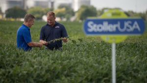Plant Nutrition is Key to Increased Yields