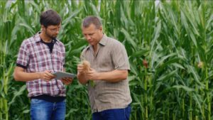 2019 4R Advocates Showcase On-Farm Implementation of Nutrient Stewardship Practices
