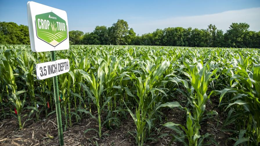 AGCO Crop Tour 2018 Shows Impact of Planting Practices