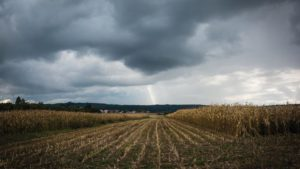 Weather Services Advance Precision Agriculture