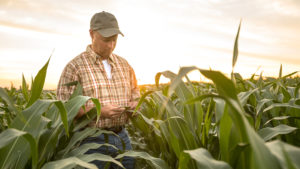 IS YOUR ANHYDROUS AMMONIA INVESTMENT INSURED?