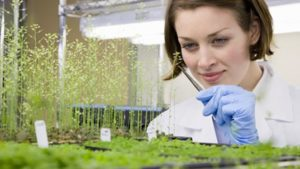 Parry America Opens New Biopesticide Facility in Oklahoma