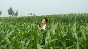 Light Sensor Tools Help Growers, Service Providers Make Sense of Nitrogen