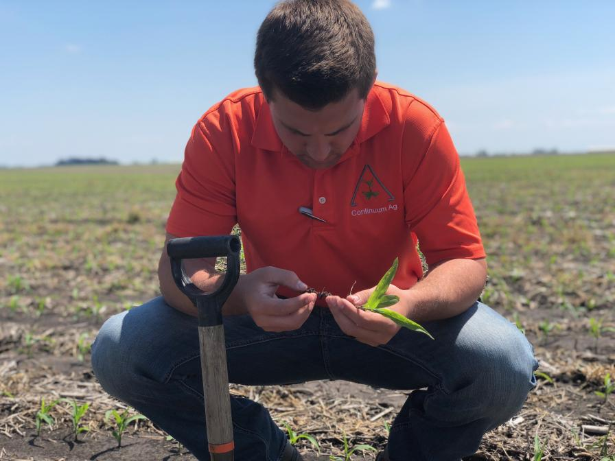 Continuum Ag: Digging Into Soil Health