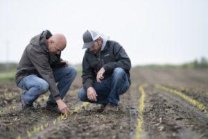 Midwestern BioAg dealer Robert Newton