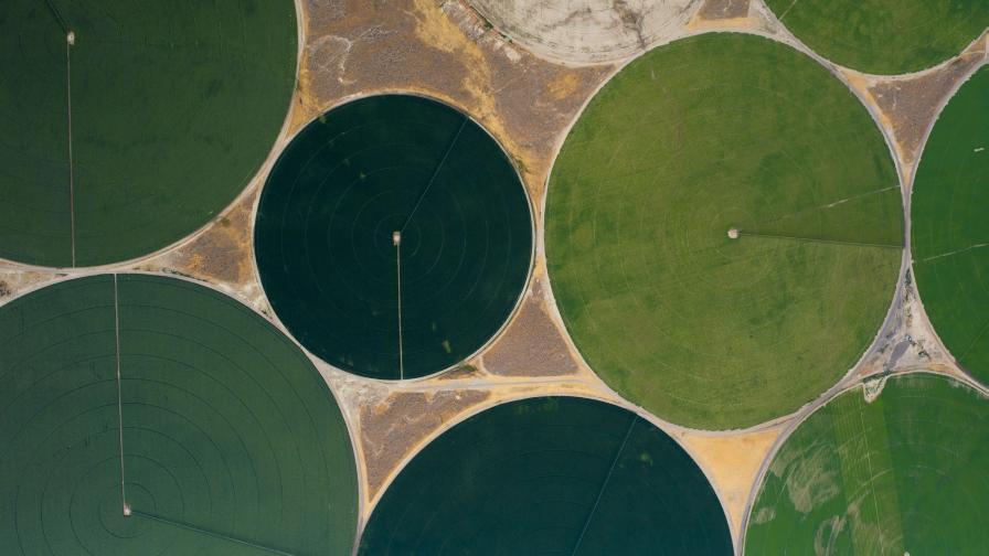 aerial image pivot fields