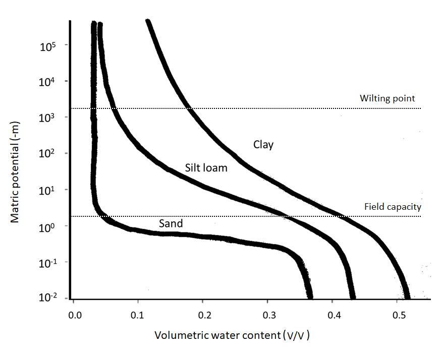 Soil Moisture Curve