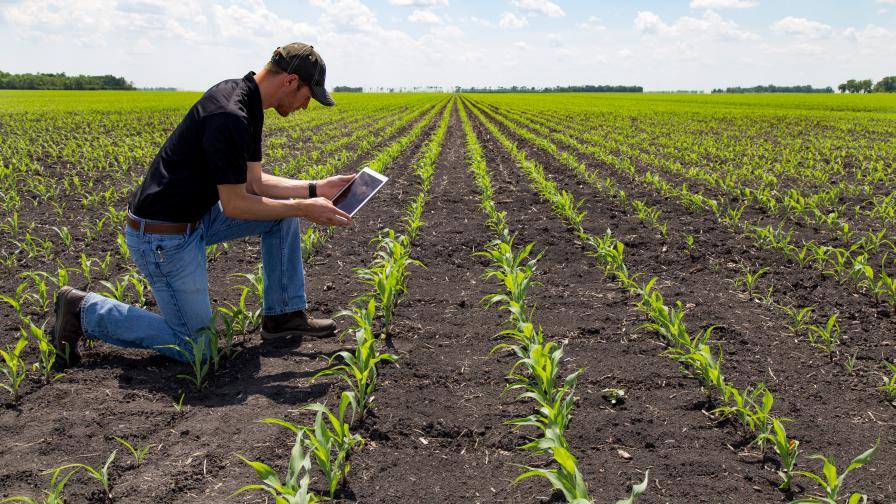 Retailer tablet field