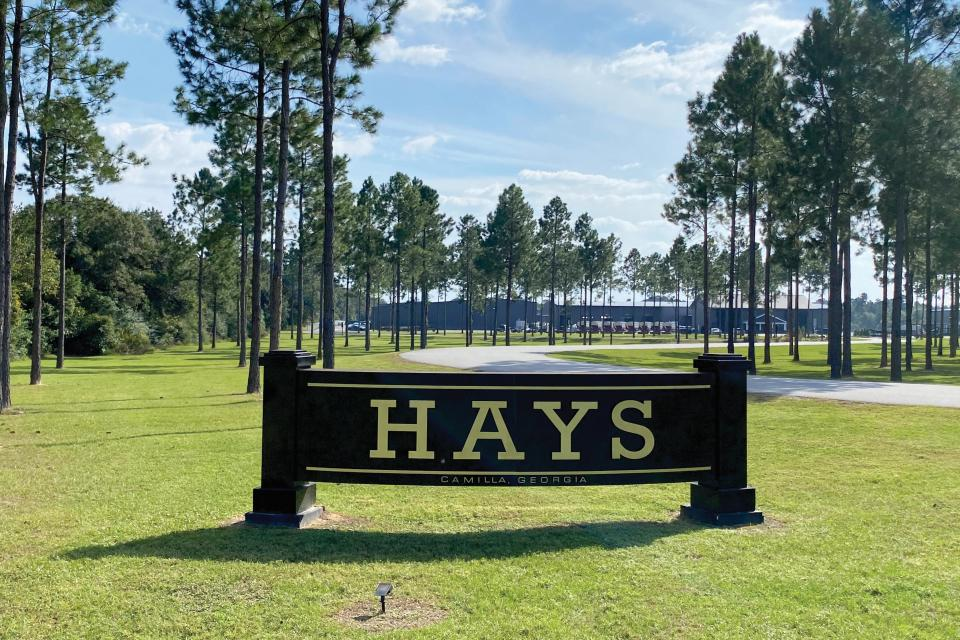 How Hays LTI Has Kept the 'Family Feeling' for Half a Century