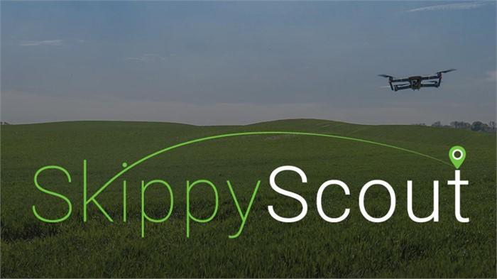 Skippy Scout (New)
