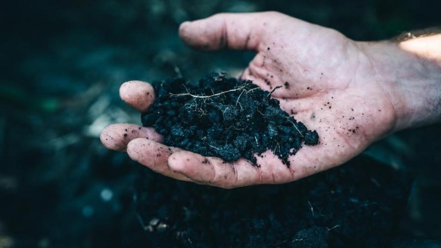 7. Sustainability.